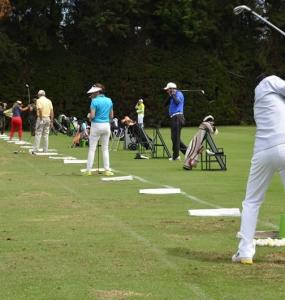 Golf para Dummies #3: El campeón del campo de práctica