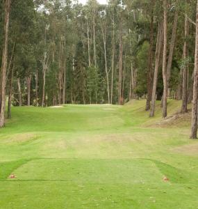 ¿Qué es Golf para Dummies?